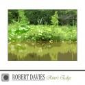 Robert Davies : river's edge
