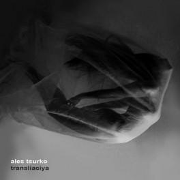 Ales Tsurko : transliaciya