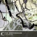 The Winterhouse : dreaming