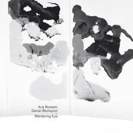 Aria Rostami & Daniel Blomquist : wandering eye