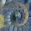 Alio Die : imaginal symmetry