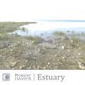 Robert Davies : estuary