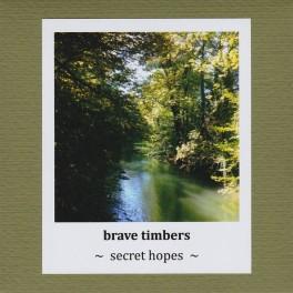 Brave Timbers : secret hopes
