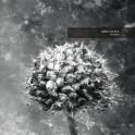 Aes Dana : pollen (2017 remaster)