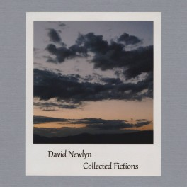 David Newlyn ‎– collected fictions
