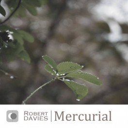 Robert Davies - mercurial