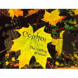 Oophoi – the rustling of leaves