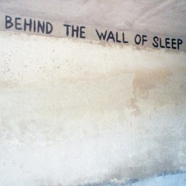 Oophoi - behind the wall of sleep