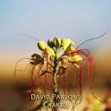 David Parsons - charka