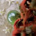 Alio Die & Parallel Worlds – the utopian blossom